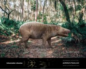 Achaenodon robustus