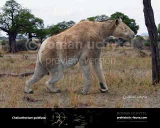 Chalicotherium goldfussi