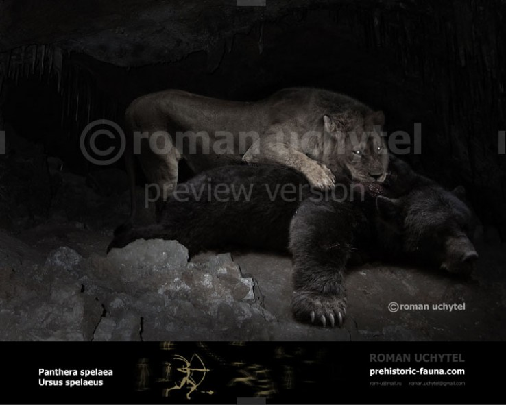 Cave bear and Сave lion