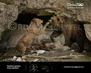Panthera spelaea and Ursus spelaeus
