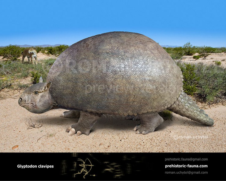 Glyptodon (old version)