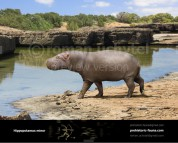 Cypriot pygmy hippopotamus