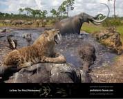La Brea Tar Pits (Pleistocene)