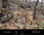 Пантера северных лесов (5)