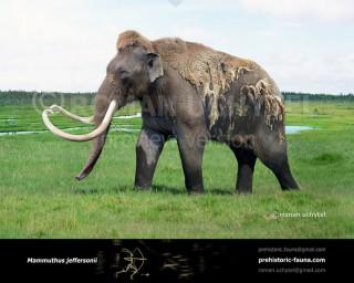 Jeffersonian Mammoth
