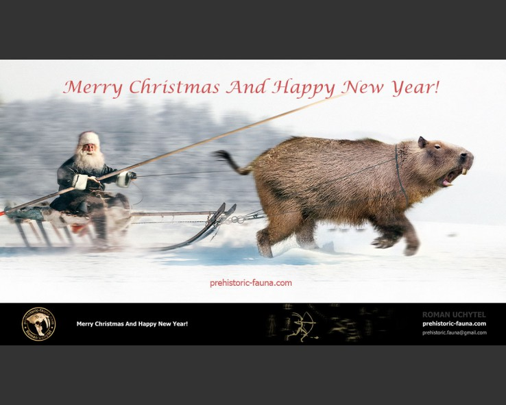 Merry Christmas and Happy New Year! (2020)