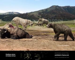Arctodus simus & Panthera atrox