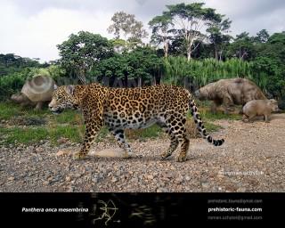 Pleistocene South American jaguar (Panthera onca mesembrina)
