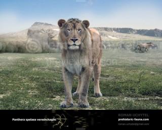 Panthera spelaea vereshchagini