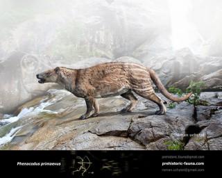 Phenacodus primaevus