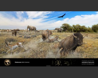 Pleistocene epoch (North America)