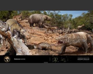 Pleistocene (Australia)