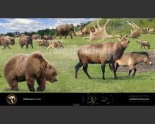 Pleistocene (Europe)