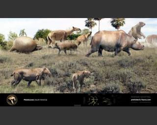 Pleistocene epoch (South America)