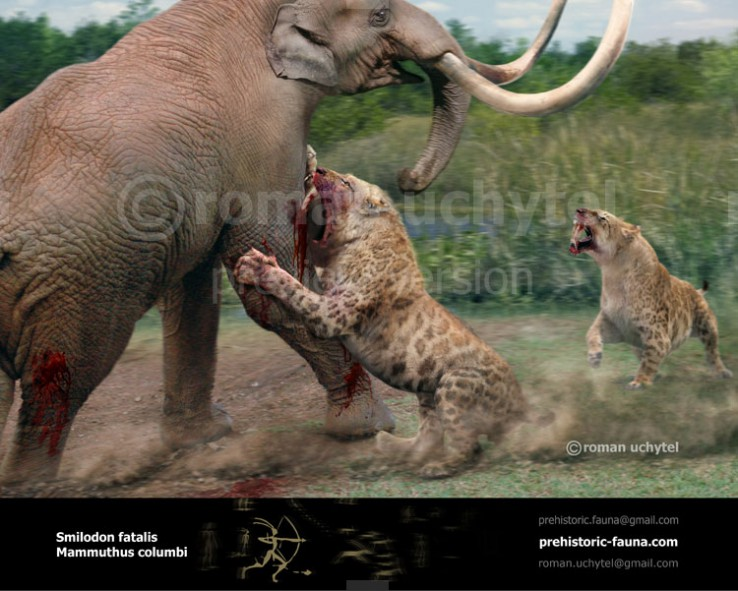 Columbian Mammoth and Smilodon‭