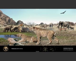 Pleistocene epoch (North America)2