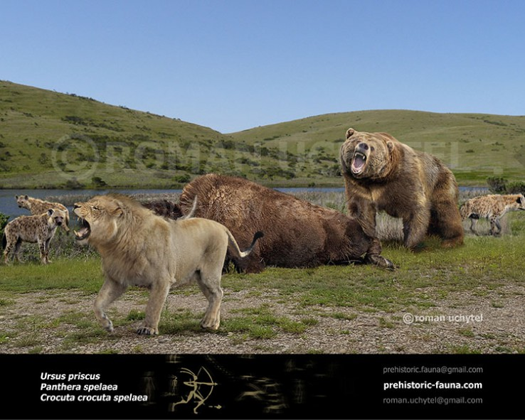 The steppe brown bear and cave lion