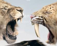 Panthera atrox and Smilodon fatalis