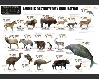 Animals destroyed by Civilization, poster