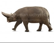 Arsinoitherium zitteli (white background)