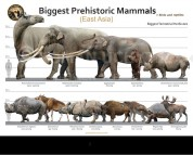 Biggest Prehistoric Mammals of East Asia (Herbivore), poster