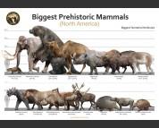 Biggest Prehistoric Mammals of NA (Herbivore), poster