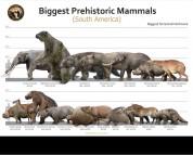Biggest Prehistoric Mammals of SA (Herbivore), poster