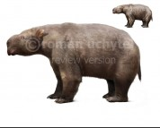 Diprotodon (white background)