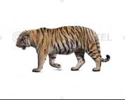 Wanhsien tiger (white background)
