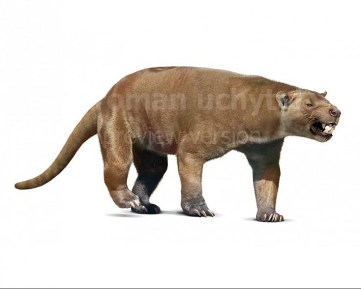 Sarkastodon mongolensis  (white background)