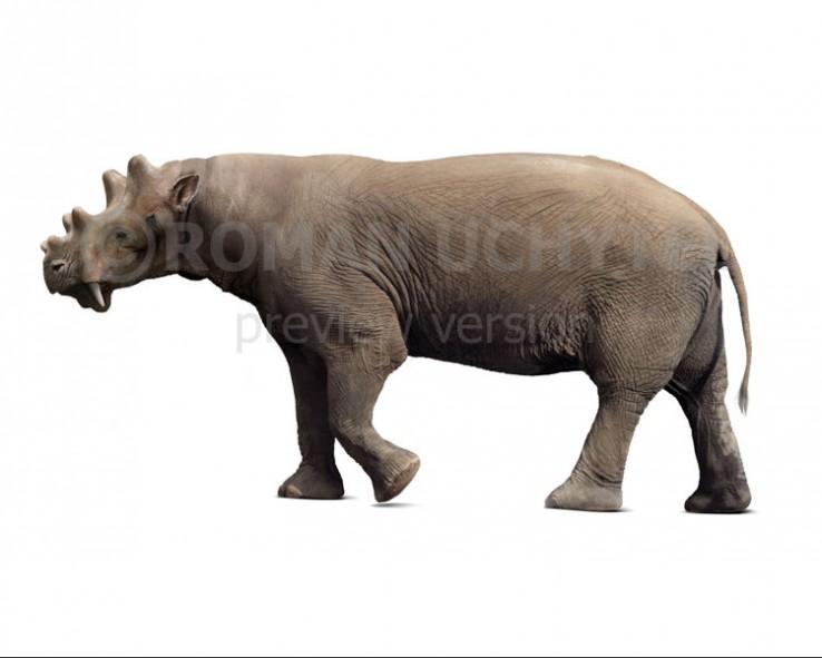 Uintatherium (white background)