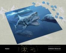 Puzzle Megalodon