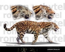 Longdan tiger (Panthera zdanskyi)