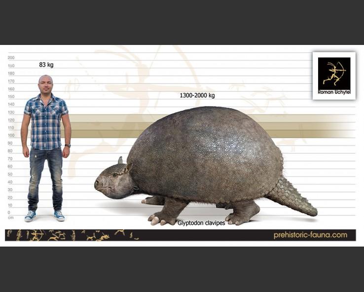 20.000 éves glyptodon lelet egy argentin farmer lábai alatt